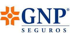 gnp-1.jpg